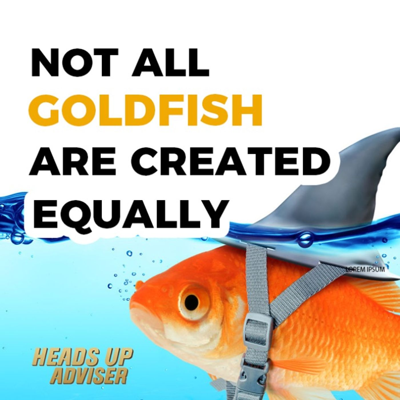 Not All Goldfish Are Created Equally