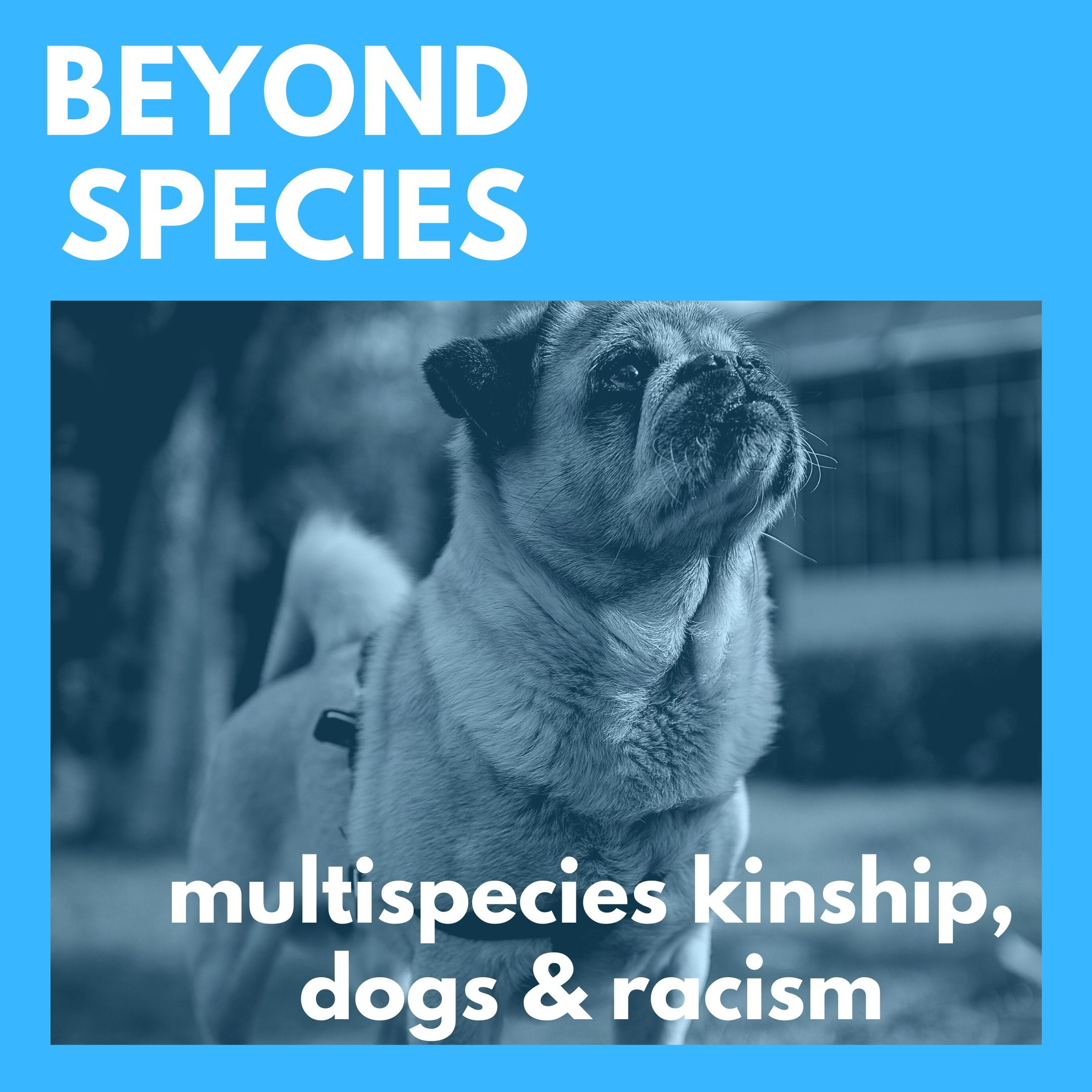 Multispecies Kinship, Dogs & Racism