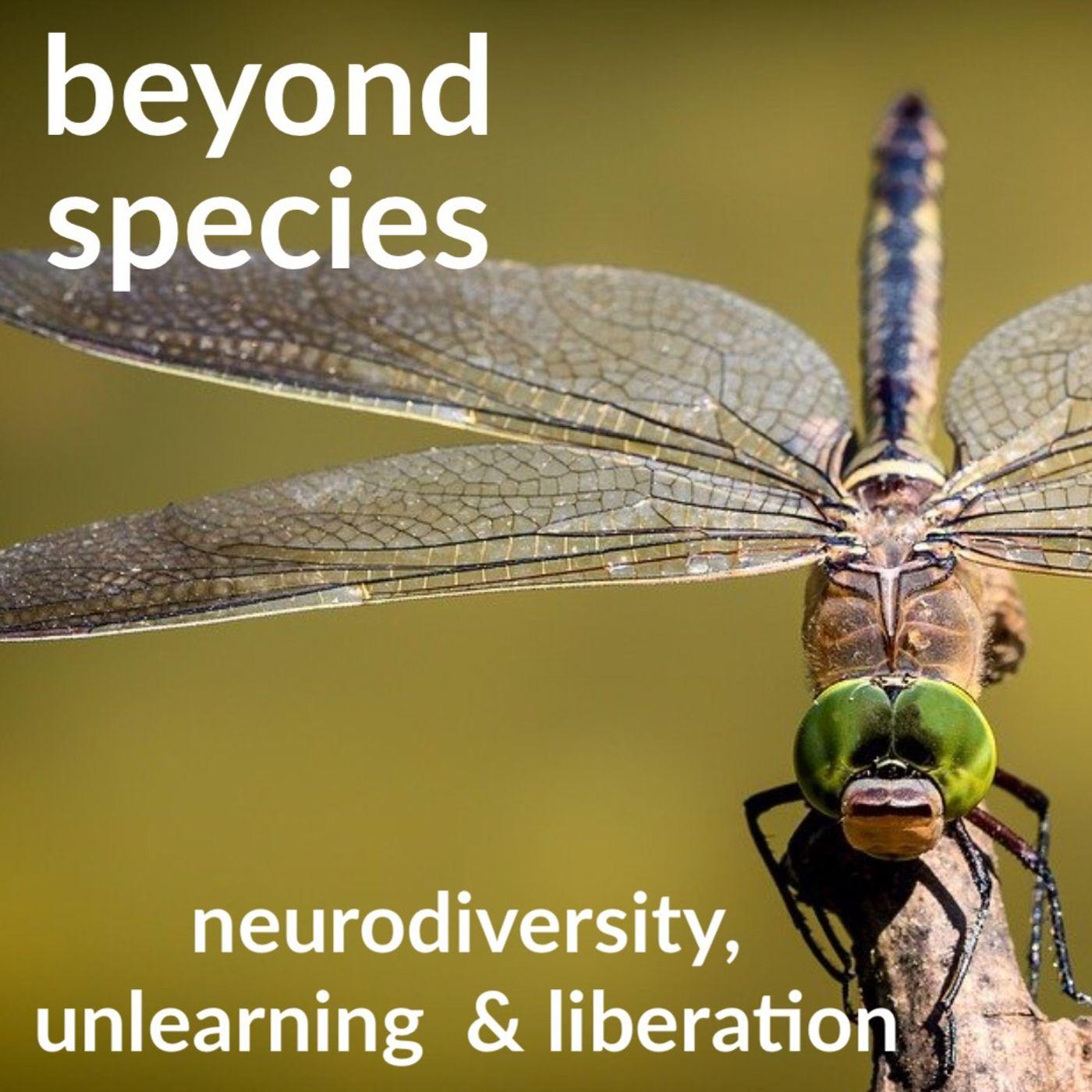 Neurodiversity, Unlearning & Liberation