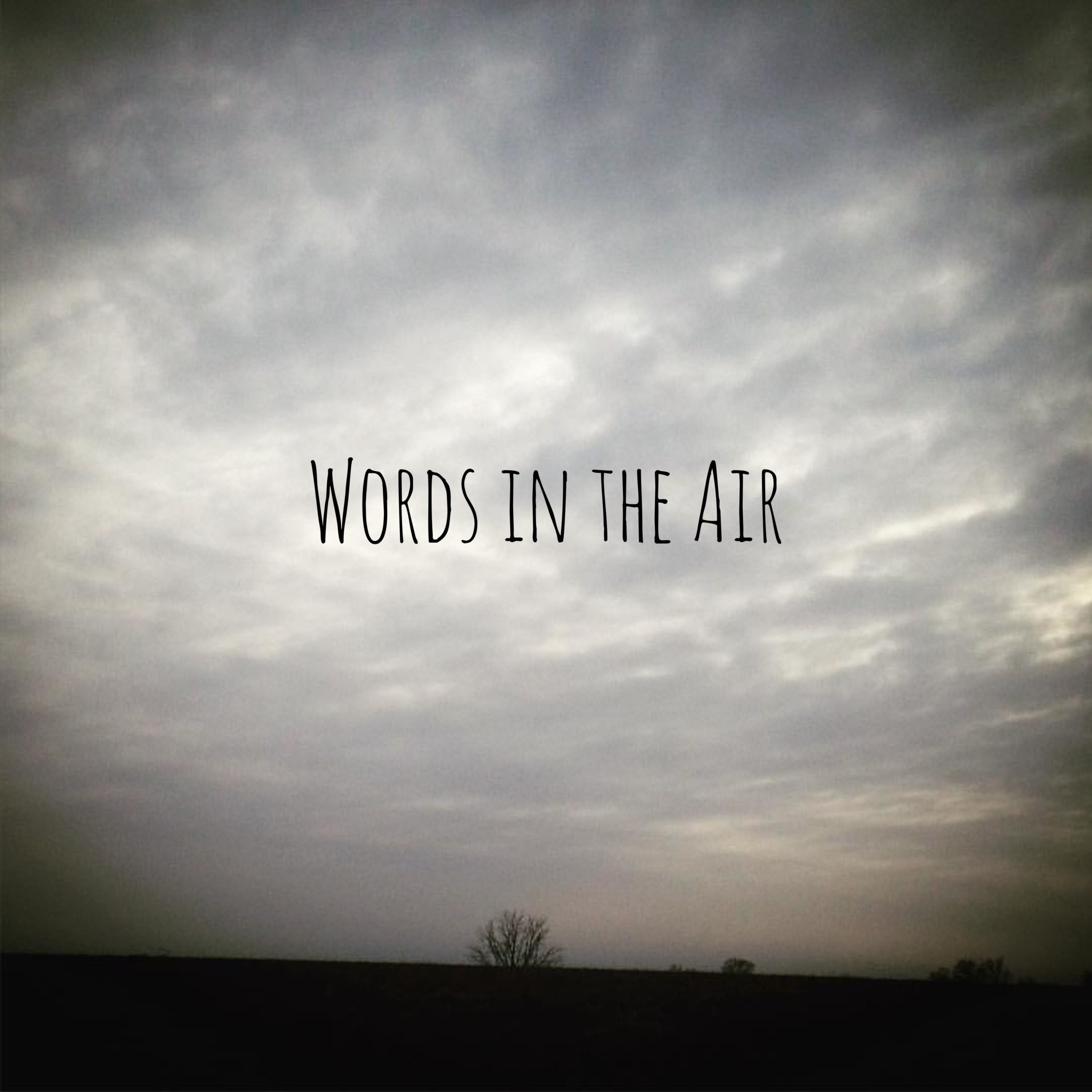 Words in the Air