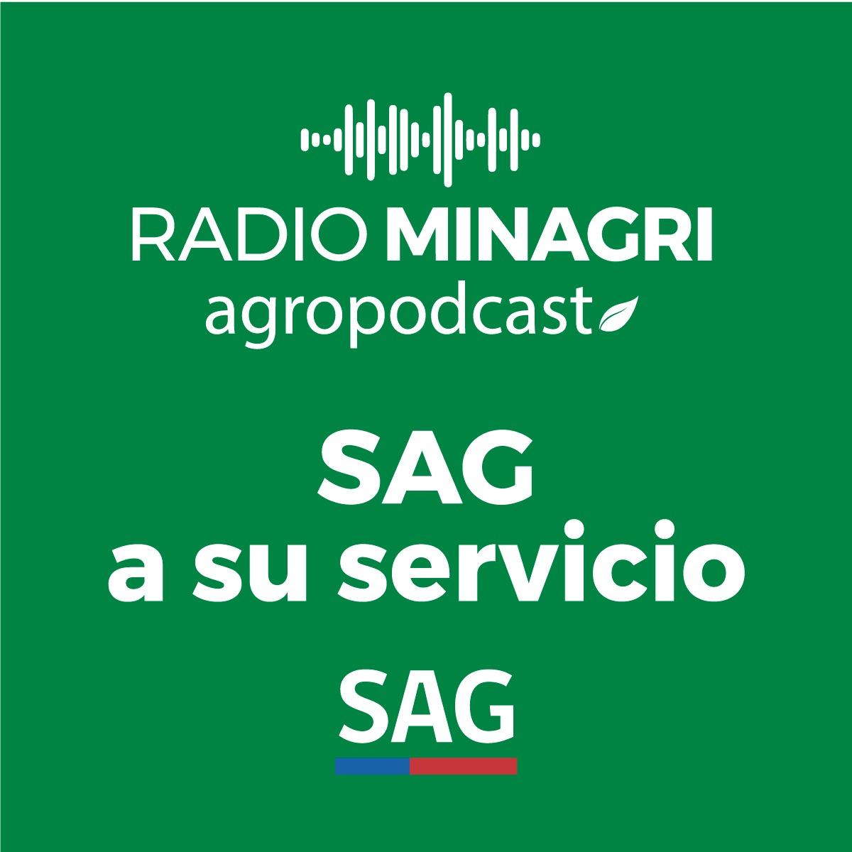 SAG a su servicio – Episodio 18: Noticias del agro