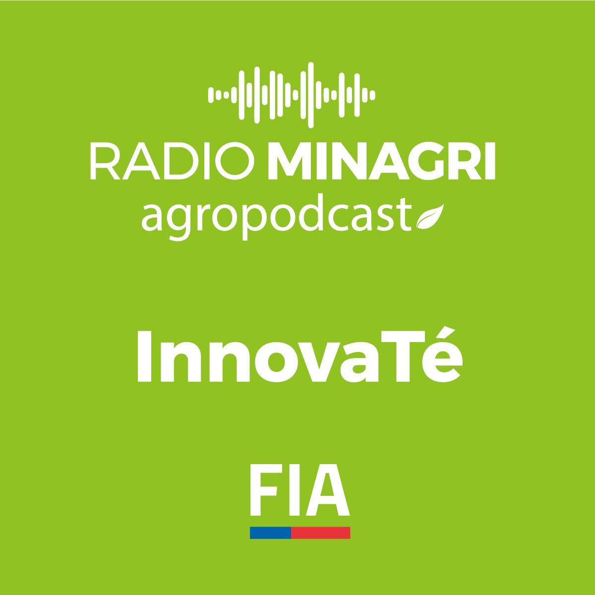 InnovaTé – Episodio 26: Forestación con híbridos de roble-raulí