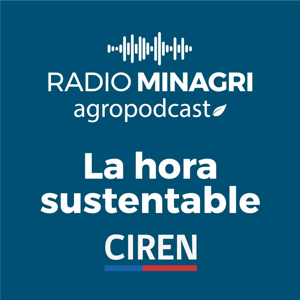 La hora sustentable – Episodio 14: Nuevos proyectos de CIREN