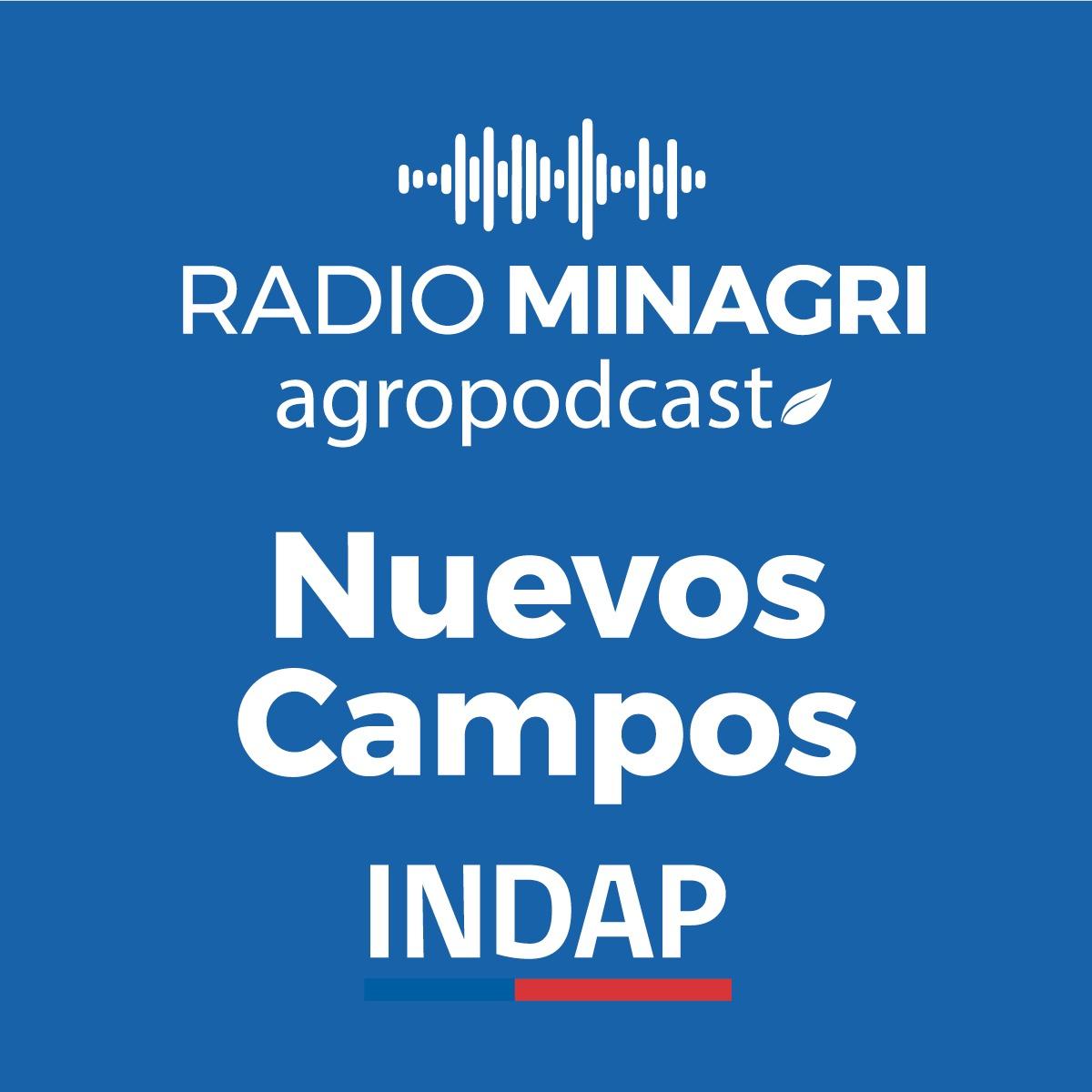 Nuevos campos – Episodio 45: Entrevista con el director de INDAP Aysén