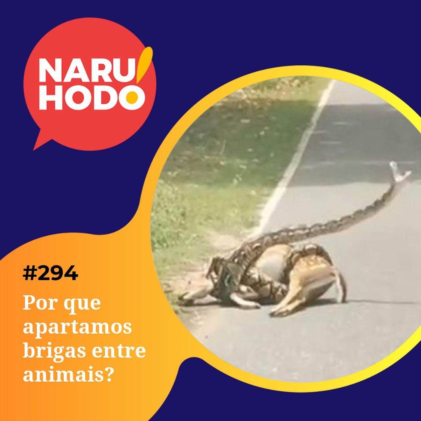 Naruhodo #294 - Por que apartamos brigas entre animais?