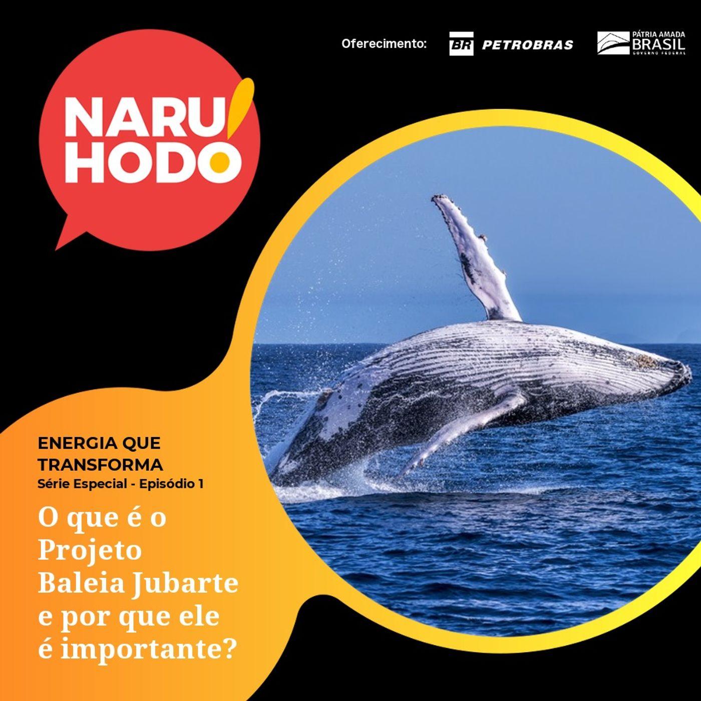 Naruhodo Extra - Série Especial ENERGIA QUE TRANSFORMA - Episódio 1: O que é o Projeto Baleia Jubarte e por que ele é importante?