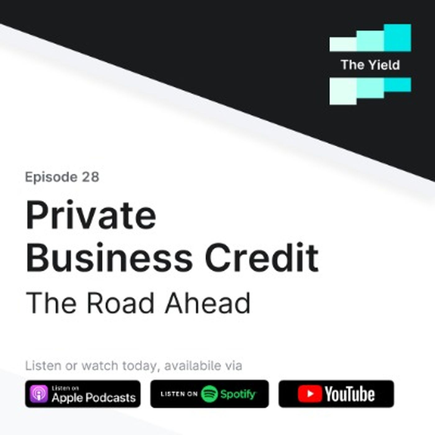 Private Business Credit: The Road Ahead