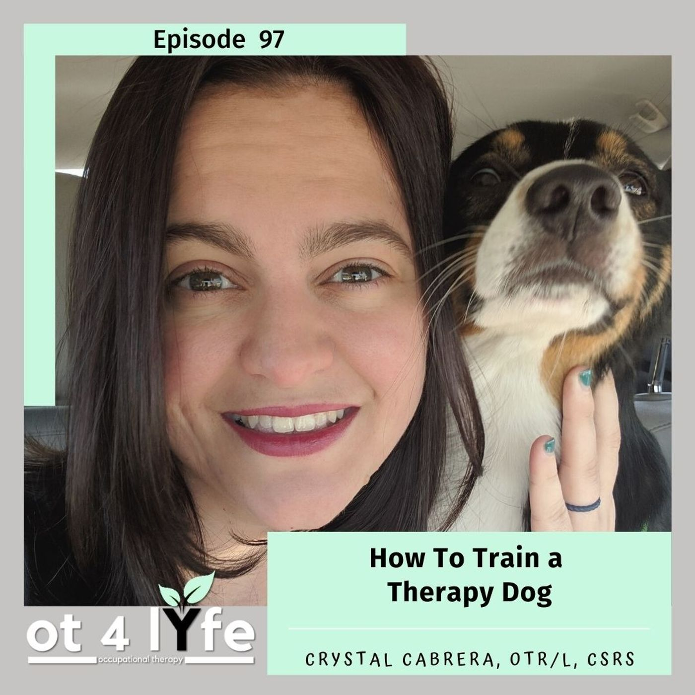 How To Train a Therapy Dog with Crystal Cabrera