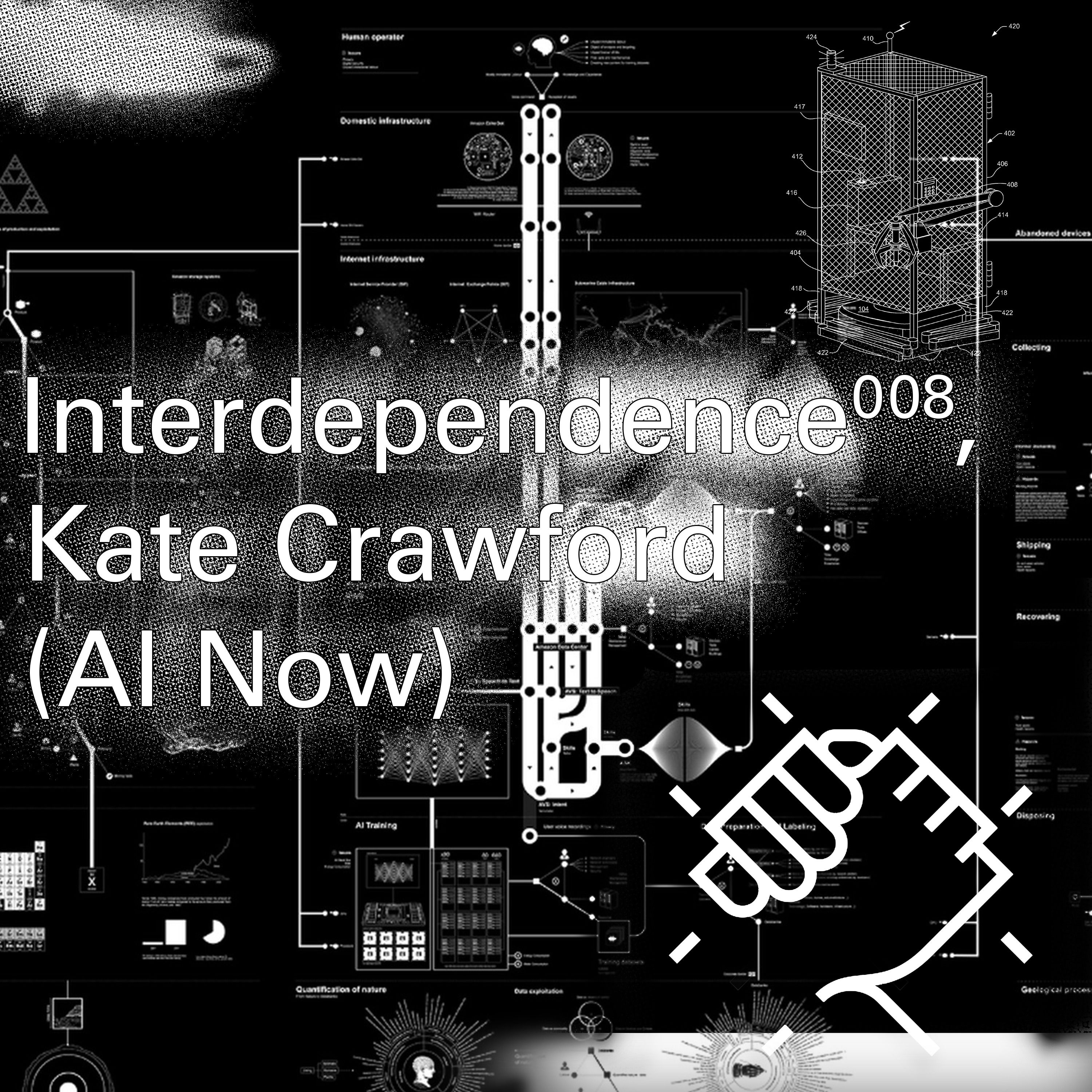 Interdependence 9: Kate Crawford (AI Now)