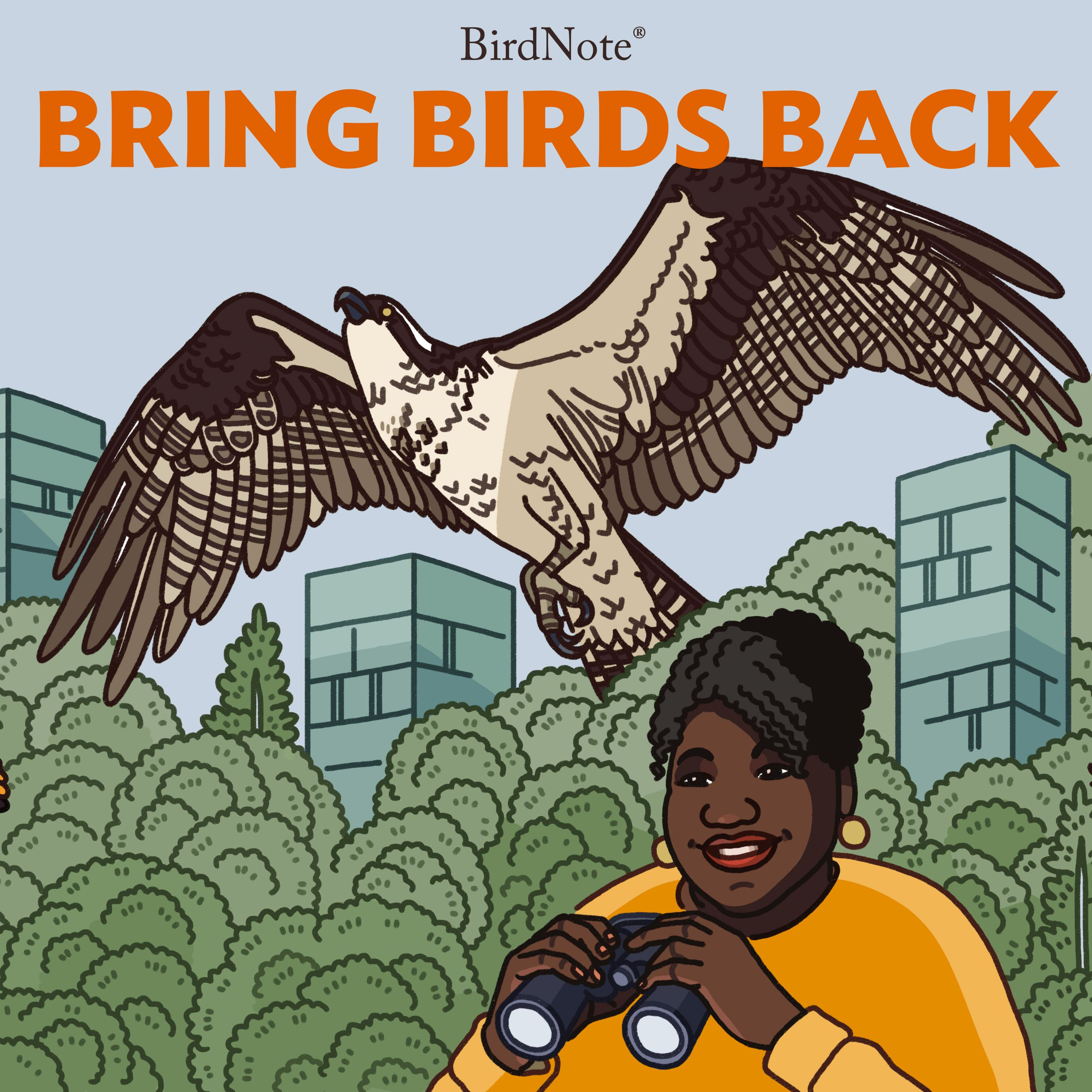 Introducing: The Bring Birds Back Podcast